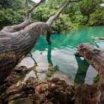Découverte du Vanuatu : Éfaté