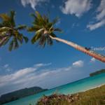 Découverte du Vanuatu : Espiritu Santo